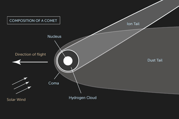 Composition of a comet